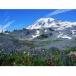 Nature's Splendors: Landscapes download
